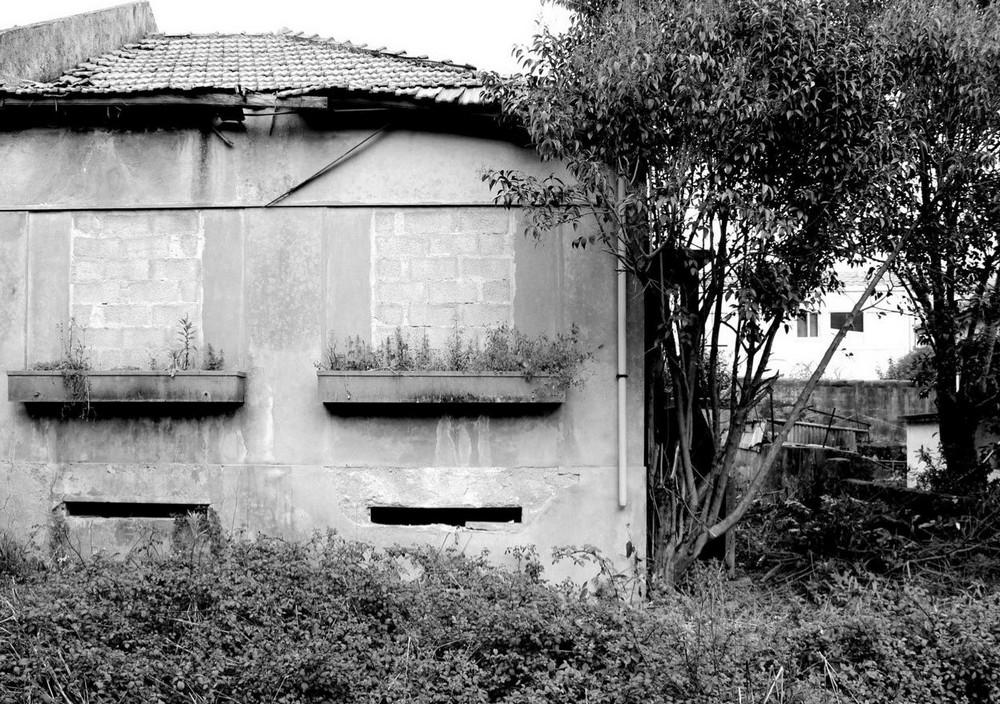 Дом из бетона и стекла в Португалии