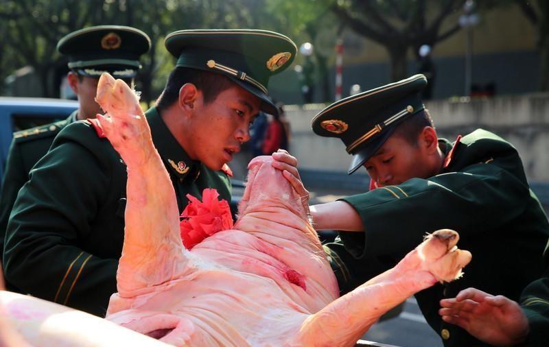 В Китае фермеры и рабочие поддерживают солдат тушами поросят