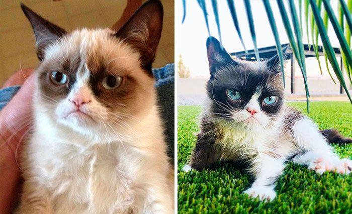 Герои популярных мемов: тогда и сейчас