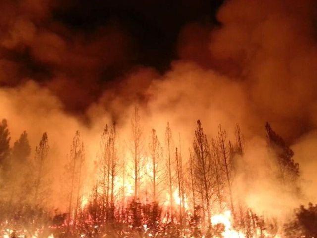 Необычный способ уберечь фамильный фарфор от пожара