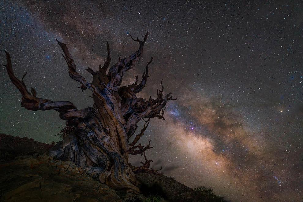 Финалисты конкурса Астрономический фотограф 2018