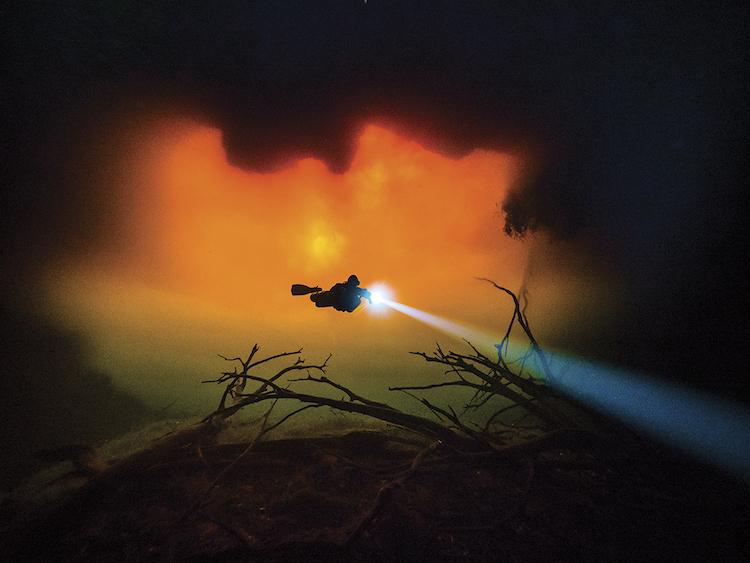 Победители конкурса лучшей подводной фотографии Through Your Lens 2018