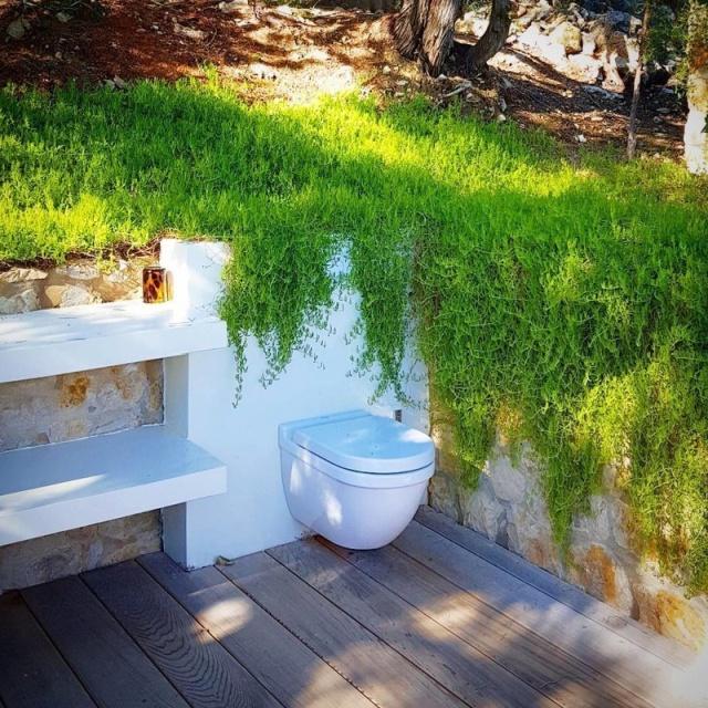 Очень странные и необычные туалеты