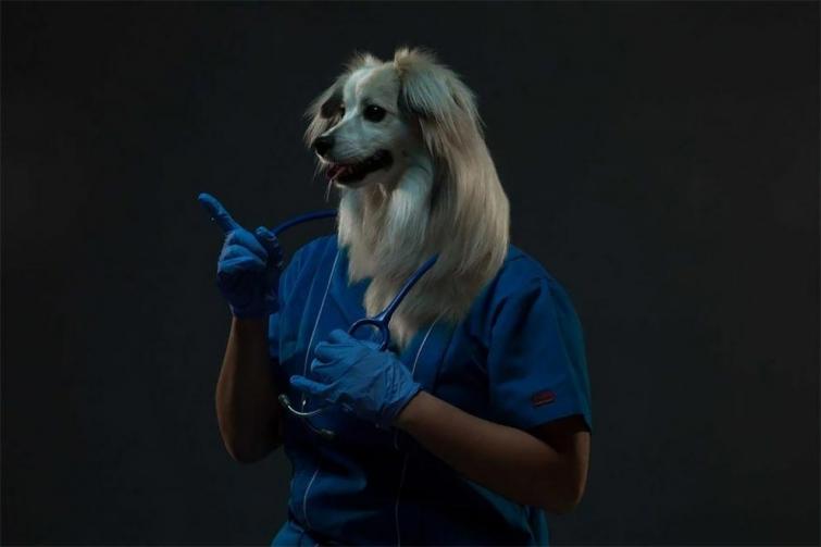 Собака – отражение хозяина: фотопроект Айзека Альвареса