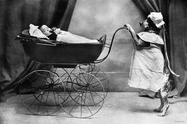 Фотошалости наших предков, которые сегодня оставляют в недоумении