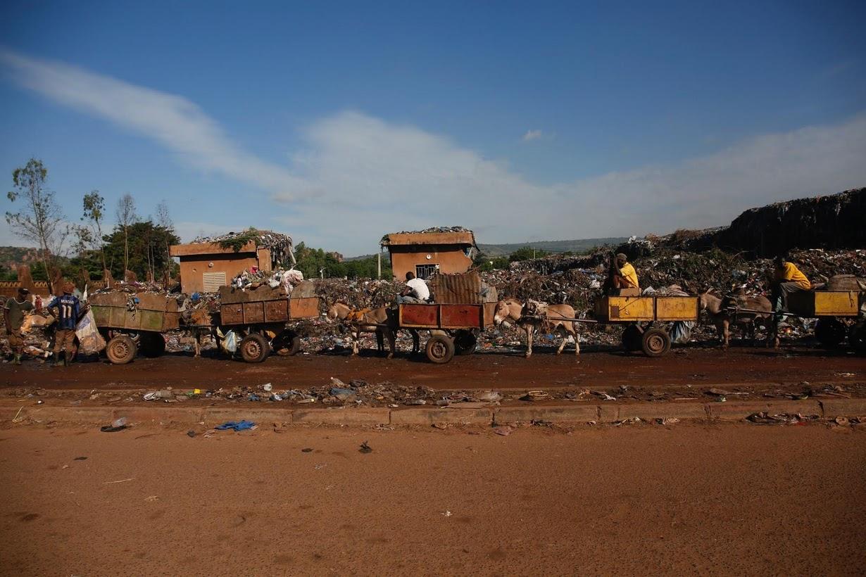 Как ослики помогают бороться с мусором в Мали
