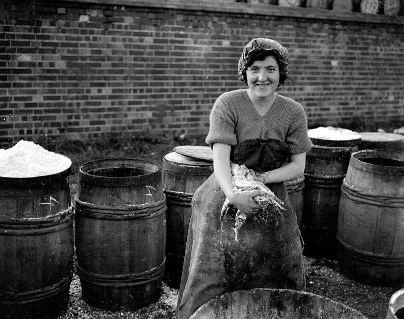 Девушки-селедки в британских доках в 1920-х годах