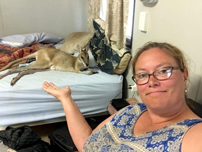 В Австралии валлаби забрался в дом и выспался в постели