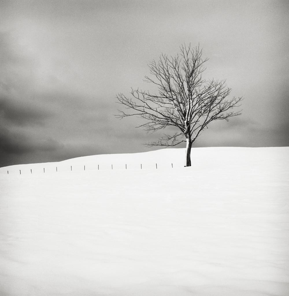 Тихие моменты: визуальные поэмы от Хокана Странда