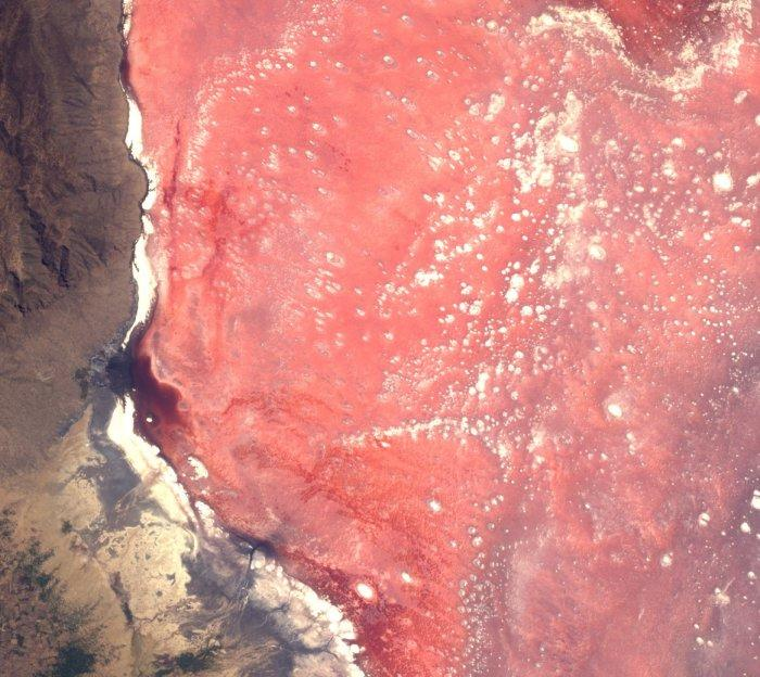 Красно-розовое озеро Натрон в Танзании