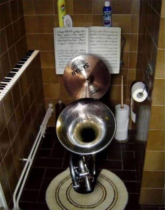 Самые необычные интерьеры туалетов