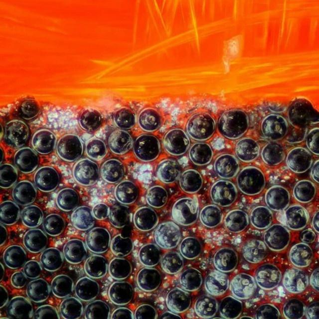 Интересные снимки разных вещей под микроскопом