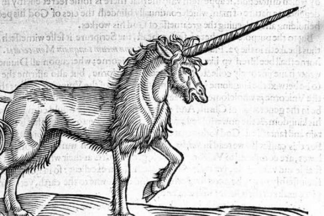 Единорог из музея Магдебурга оказался подделкой ученых