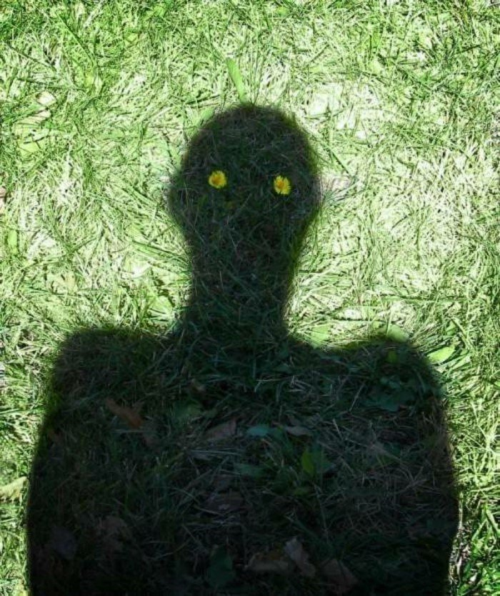 Игры с тенью на удивительных фотографиях