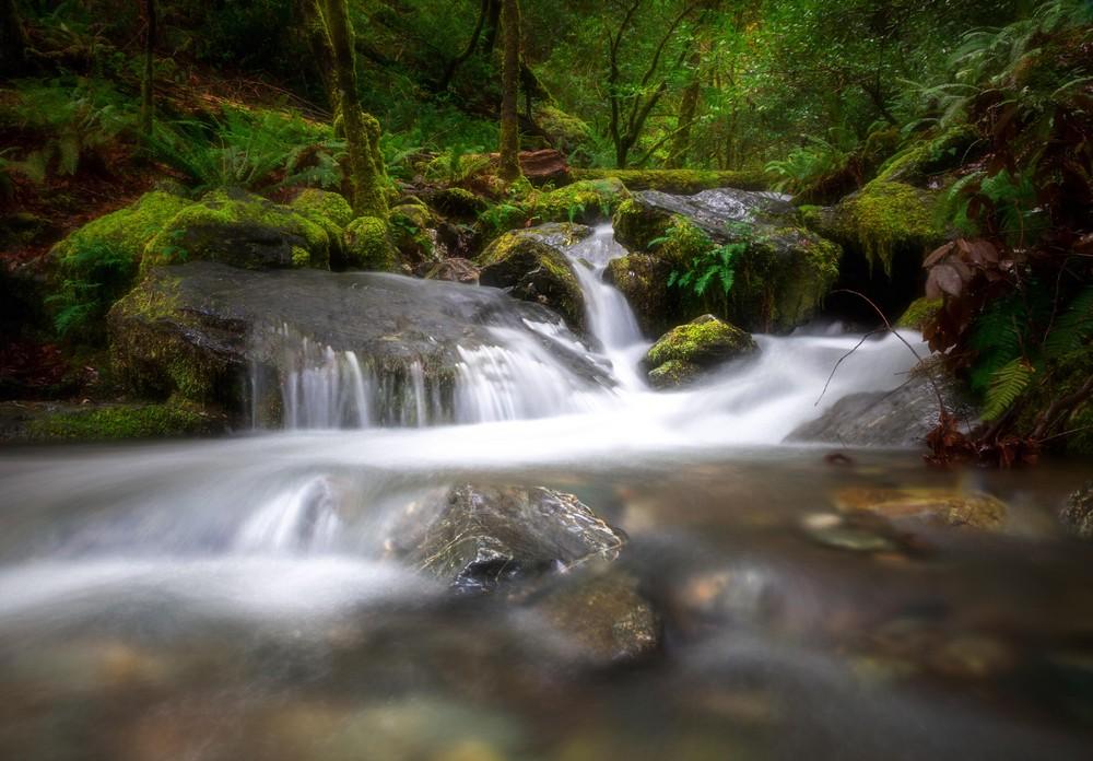 A természet szépsége a képekben