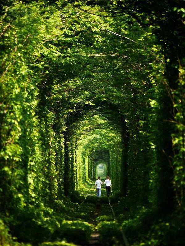 Фантастические места в разных уголках нашей планеты