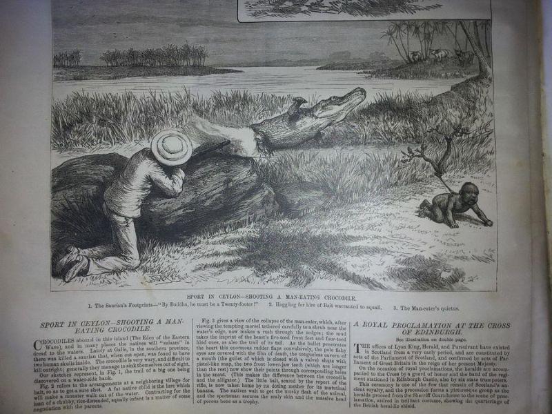 Охота на крокодила-людоеда на Цейлоне