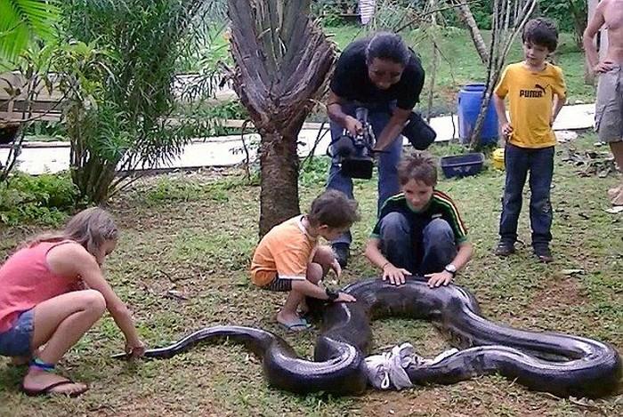 Учитель математики выловил огромную анаконду