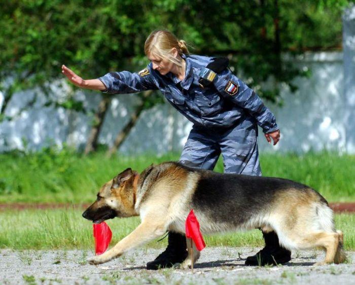 Девушки в Российской полиции