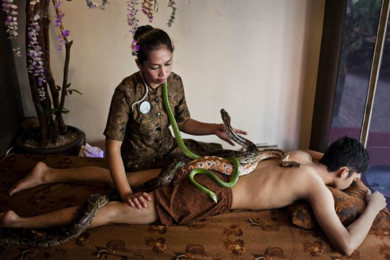 Рефлексотерапия: массаж питоном