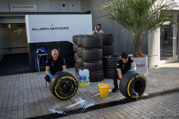 Гран-При Формулы 1 в Сочи