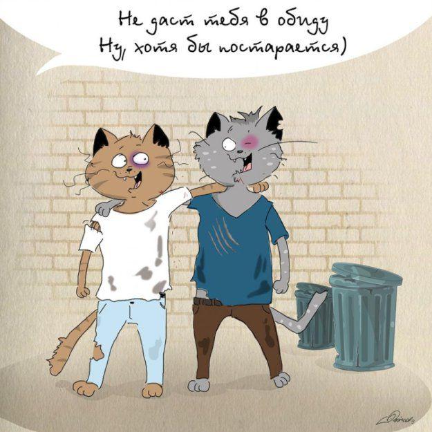 Лучший друг и коты