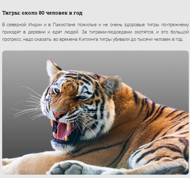 Животные, которые нас убивают