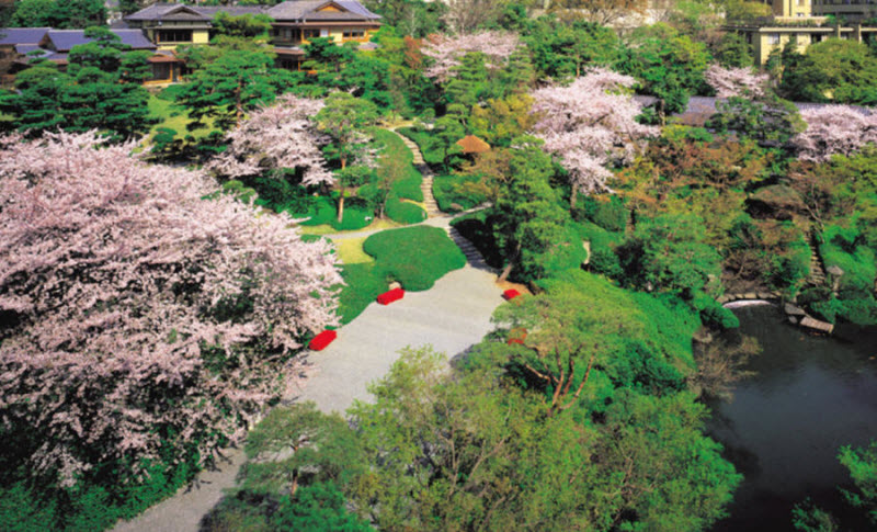 Красота японских садов