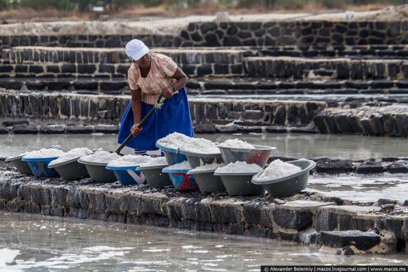 Как добывают соль на острове Маврикий в Индийском океане