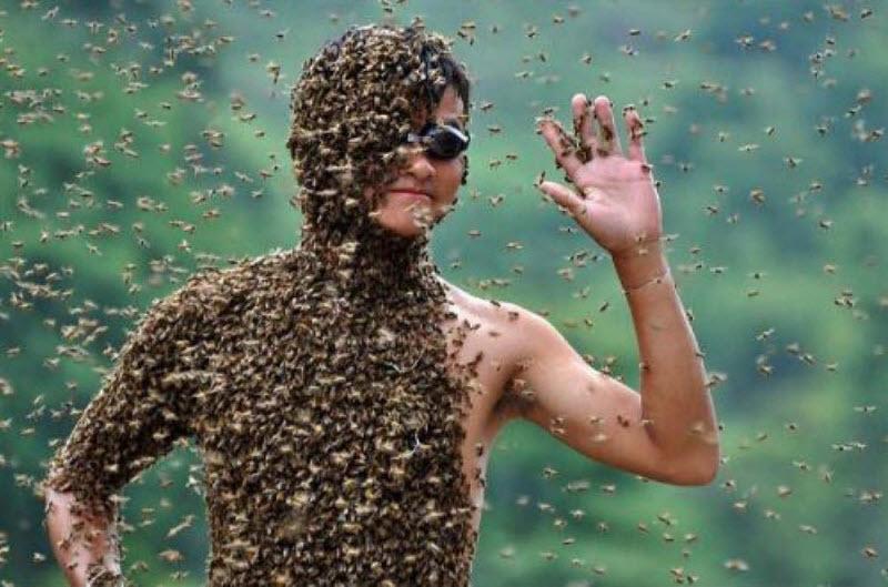 Конкурс костюмов из пчёл