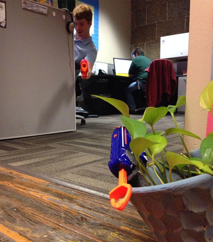 Девушка попросила коллегу присмотреть за ее цветком