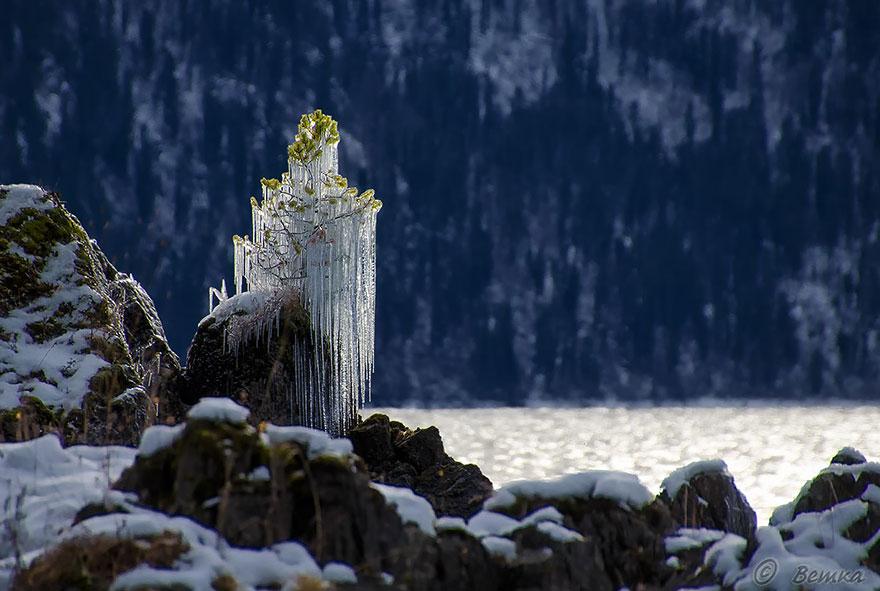 Красоты зимней природы