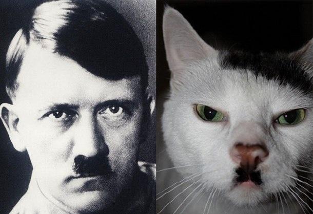 Удивительно похожие
