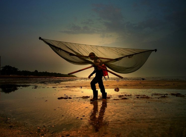 Фотоконкурс Sony World Photography Awards
