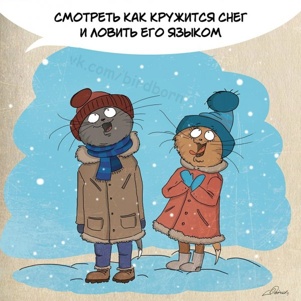 10 причин любить Зиму и коты
