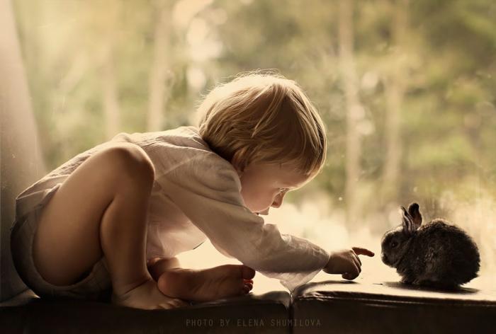 Деревенские фотографии от Елены Шумиловой