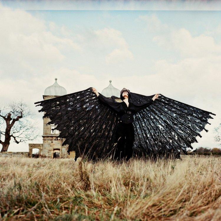 Работы скульптора и фотографа Аманды Чэрчиан