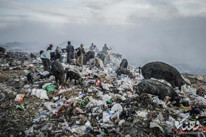 Мусорные люди Гаити