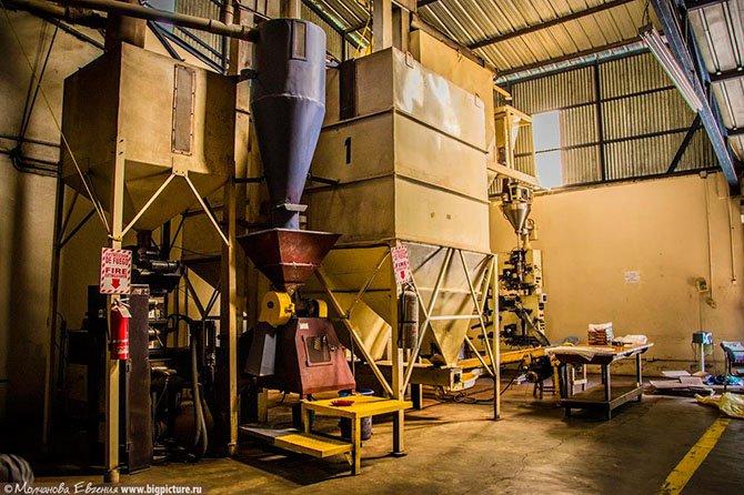 Производство кофе в Доминикане