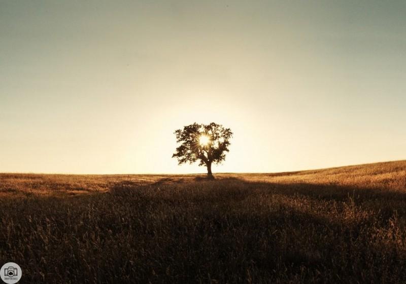Пейзажные фото Таннера Уенделла