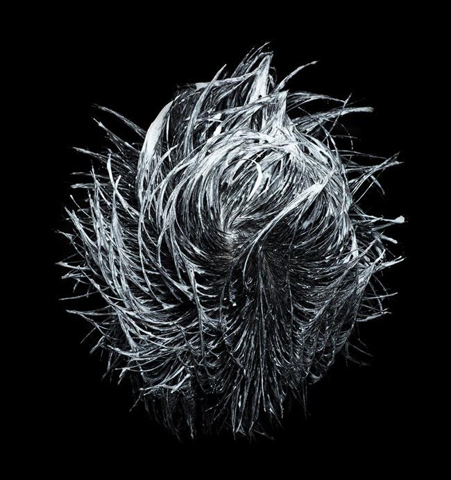 Произведения искусства из намыленных волос