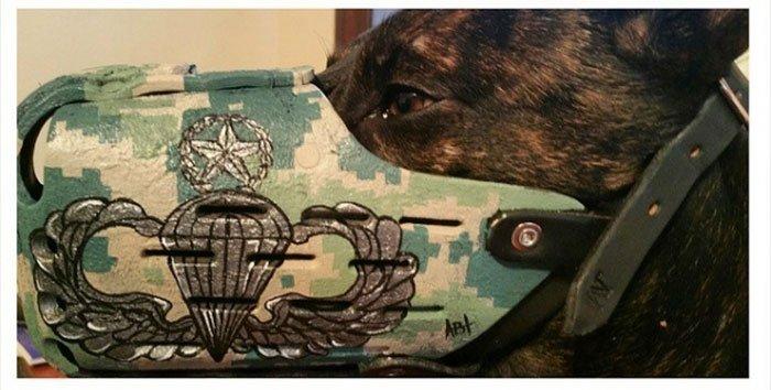 Прикольные намордники для собак