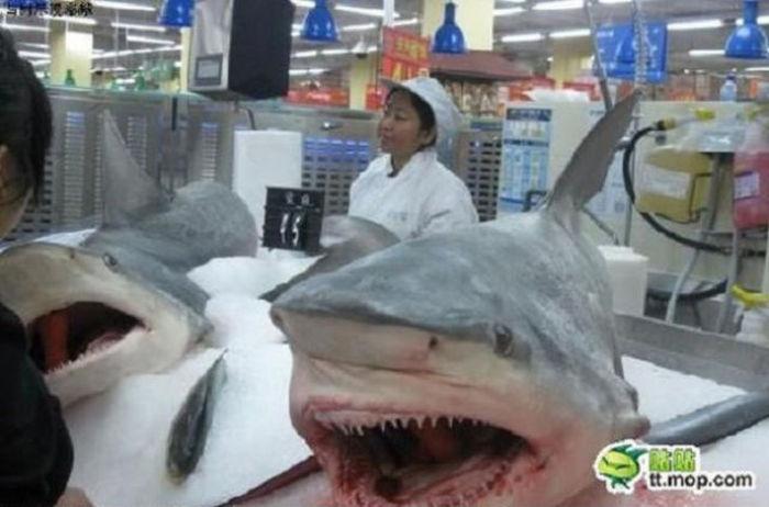 Какие продукты можно встретить в супермаркетах Китая
