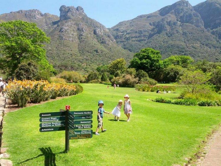 Сад Кирстенбош - царство флоры в Южной Африке