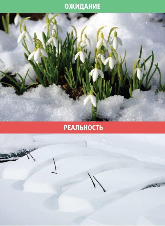 Весна: ожидания и реальность