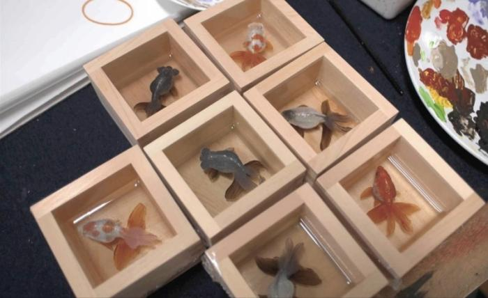 Трехмерные изображения животных между картинами и скульптурой