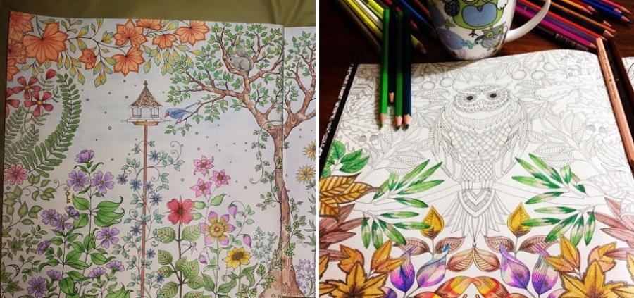 Раскраска для взрослых