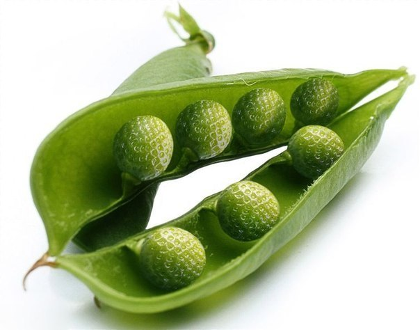 Фантазии на тему гибридов овощей и фруктов