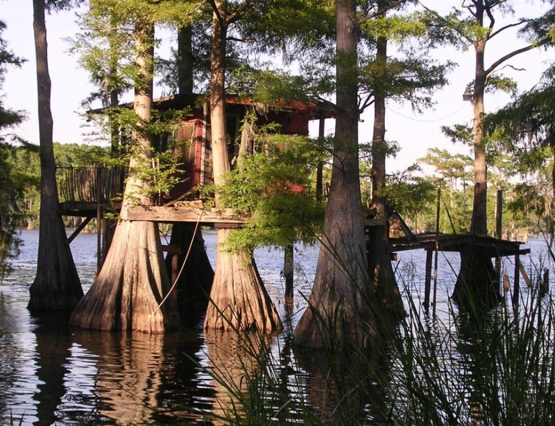 Живописное озеро Каддо