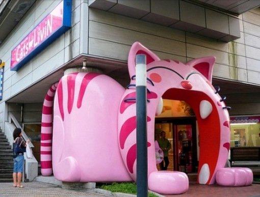 Необычные здания в форме кошек